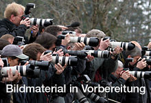 Fotografie, Bachelor of Arts